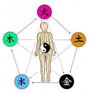 5 element body2 color
