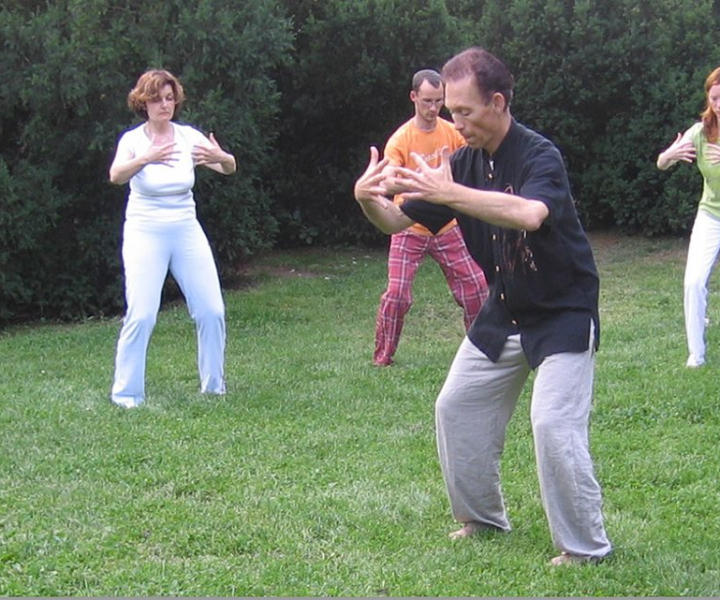 Chi Kung  Practitioner/Instructor